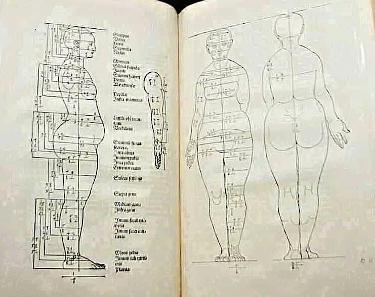 Идеальные пропорции женского тела по версии Альбрехта Дюрера 1528 года.  Какой хороший человек! - Советчица Кидстафф